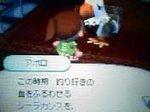 Aporo06071_2