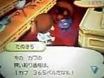 Tanukichi0825_2
